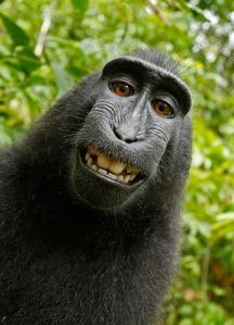 selfie fabre...